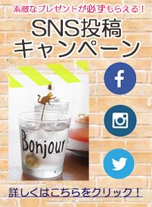 sns20160822side.jpg
